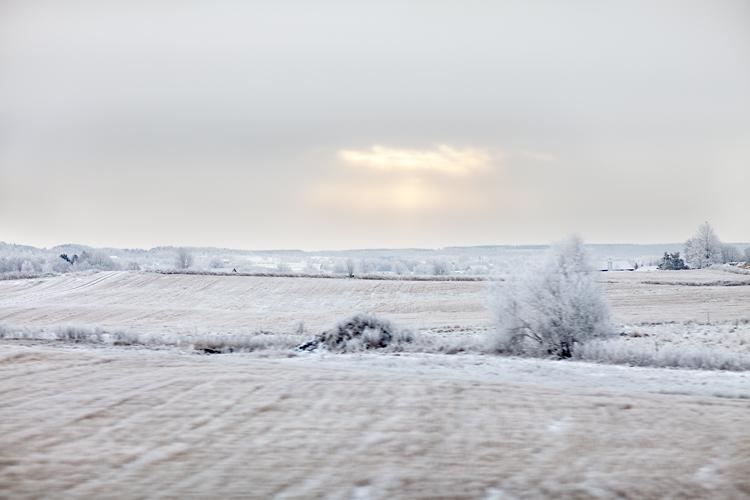 Vinter i Sverige