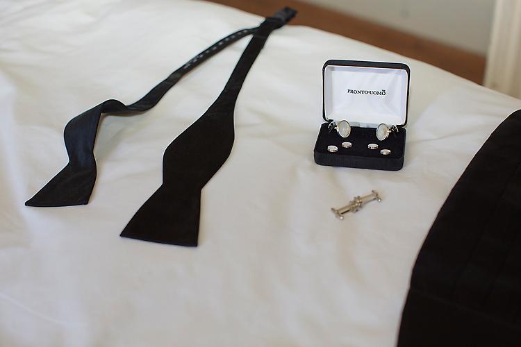 Brudgummens saker