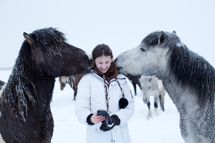 flicka blir pussad av hästar