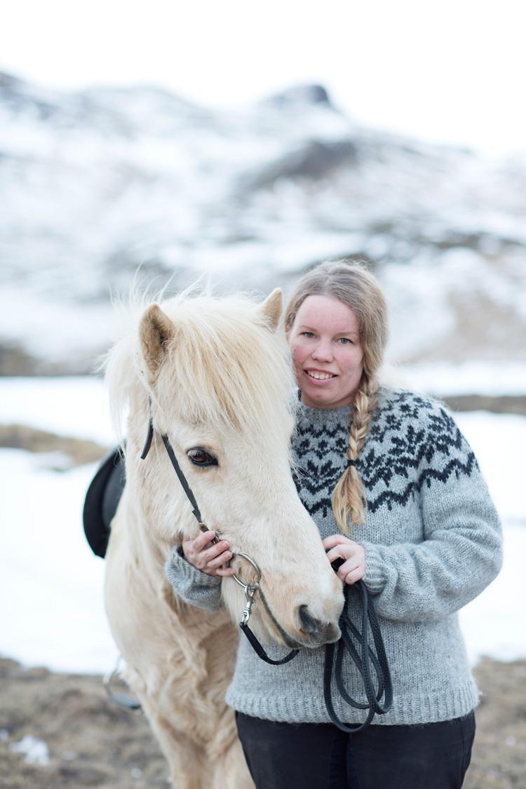 Islandshäst på Island med ryttare och islandströja